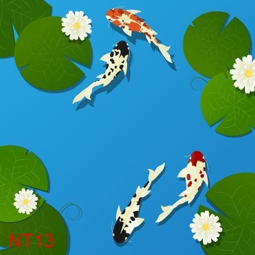 TDT NT13