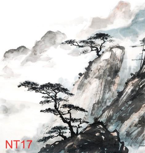 TDT NT17