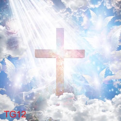 TDT TG12