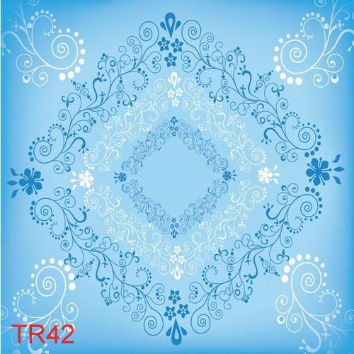 TDT TR42