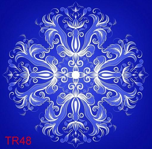 TDT TR48