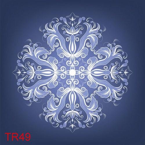 TDT TR49